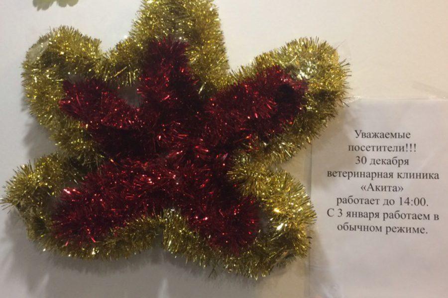 График работы клиники в новогодние праздники!!!